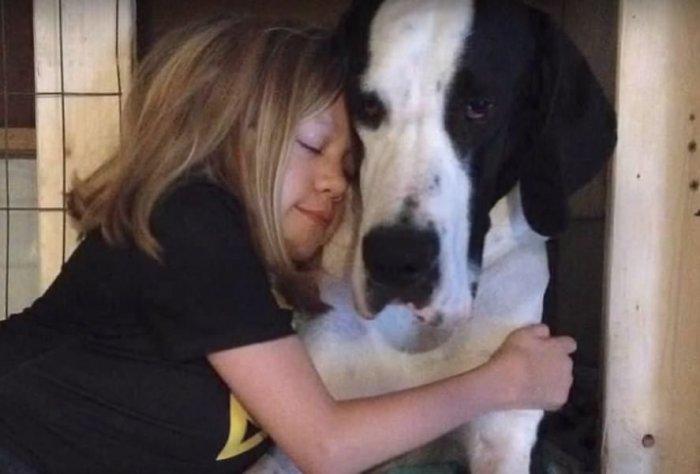 Служебная собака Джорджа Буша - старшего охраняет хозяина даже ... | 474x700